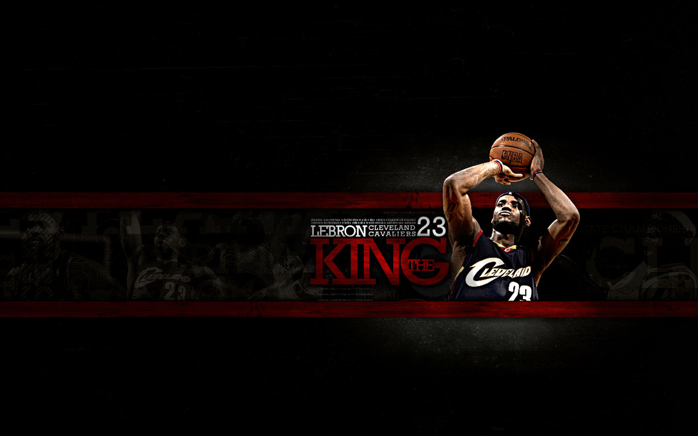 more widescreen wallpaper of lebron james... in this wallpaper lebron ...