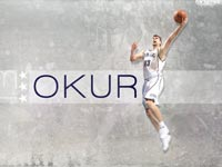 Mehmet Okur Widescreen Wallpaper