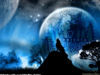 Minnesota Timberwolves Widescreen Wallpaper