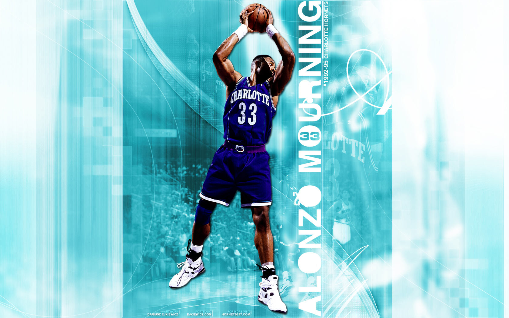 Alonzo Mourning Hornets Widescreen Wallpaper