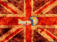 Sheffield Sharks Wallpaper