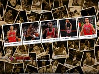 Chicago Bulls Polaroid 2010 Widescreen Wallpaper