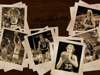 Larry Bird Celtics Widescreen Wallpaper