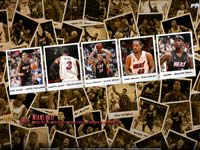 Miami Heat 2010 Widescreen Wallpaper