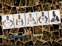 New Orleans Hornets Polaroid 2010 Widescreen Wallpaper