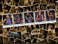 New York Knicks Polaroid 2010 Widescreen Wallpaper