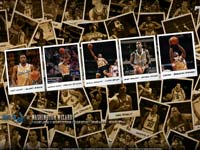 Washington Wizards 2010 Widescreen Wallpaper