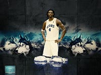 Chris Bosh Toronto Huskies Wallpaper