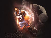 Gerald Wallace Charlotte Bobcats Wallpaper