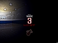 Dwyane Wade Number 3 Widescreen Wallpaper