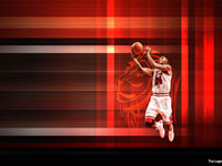 Tyrus Thomas Bulls Widescreen Wallpaper