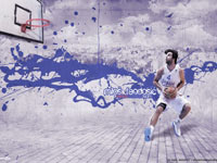Milos Teodosic Serbia Eurobasket 2011 Wallpaper