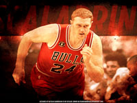 Brian Scalabrine Bulls 1920x1200 Wallpaper