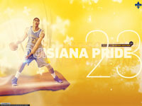 Anthony Davis Hornets 2013 2880x1800 Wallpaper
