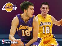 Sasha Vujacic Wallpaper