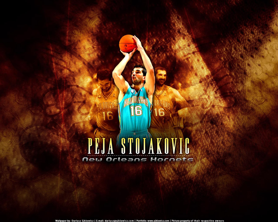 Peja Stojakovic Hornets Wallpaper