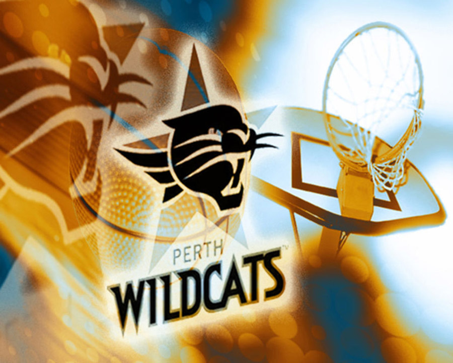 Perth Wildcats Wallpaper