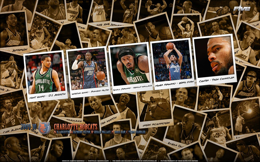 Charlotte Bobcats 2010 Widescreen Wallpaper