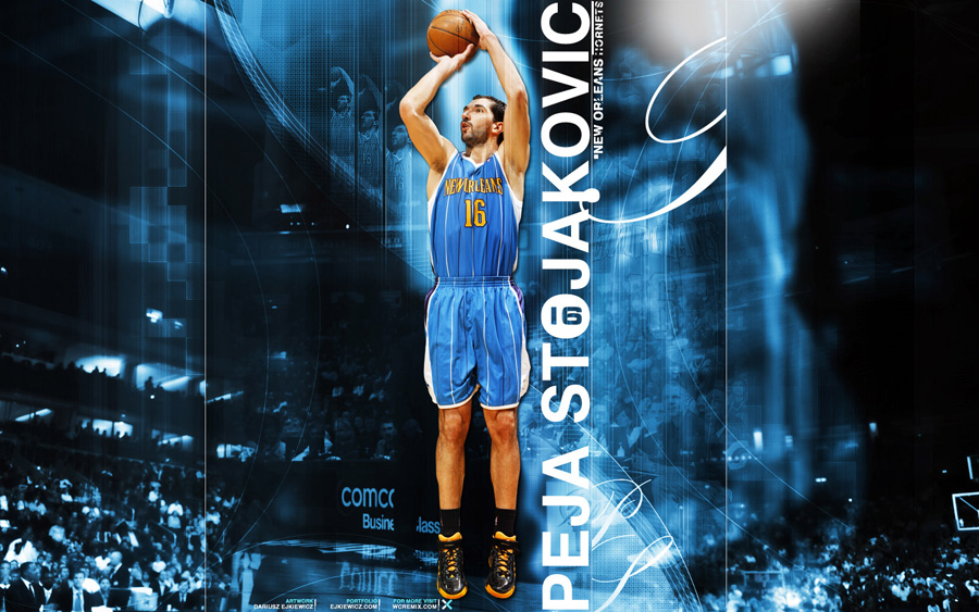 Peja Stojakovic Widescreen Wallpaper