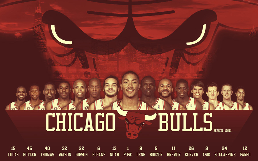 Chicago Bulls 2010-11 Roster Widescreen Wallpaper