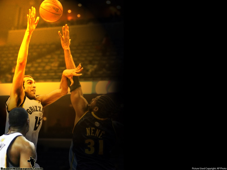 Hamed Haddadi Grizzlies Wallpaper